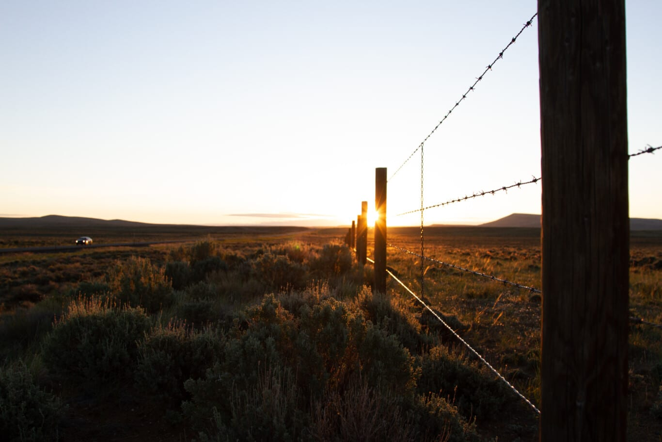 Sunrise Fenceline near Farson